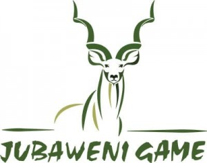 Jubaweni Game Logo Small